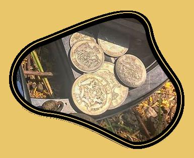 Поиск серебрянных и золотых монет в полях